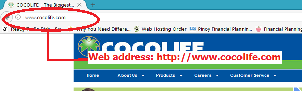 Cocolife Insurance Premium Payments Online